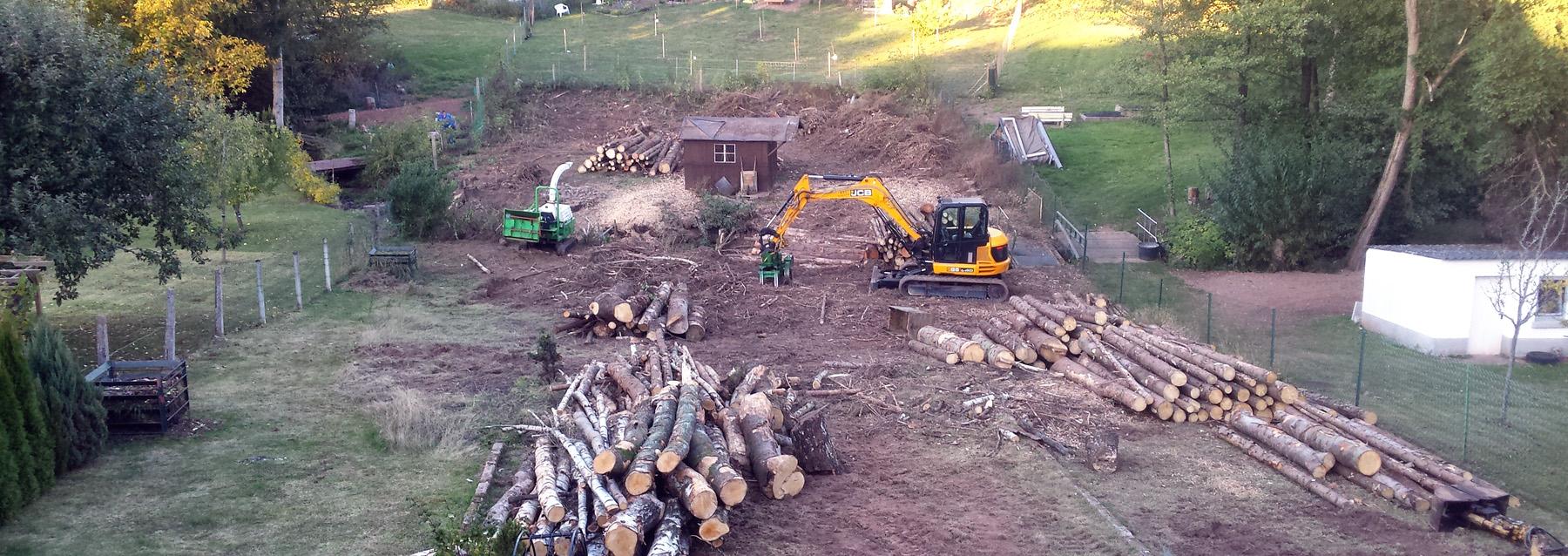 Baumfällung Saarland