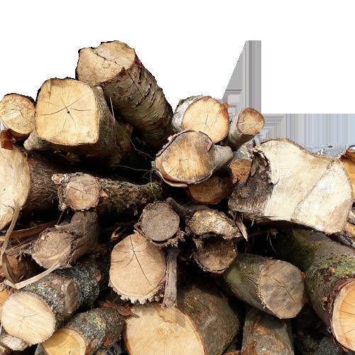 Brennholz Saarland Angebot
